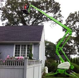allscape tree service ri